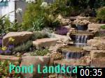 Video of Pond Landscapes