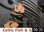 Video of Celtic Fish & Game