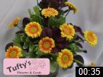 Video of Tufty Flowers & Cards