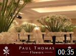Video of Paul Thomas Flowers Ltd.