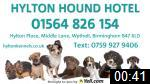 Video of Hylton Hound Hotel