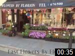 Video of Fast Flowers By Florion